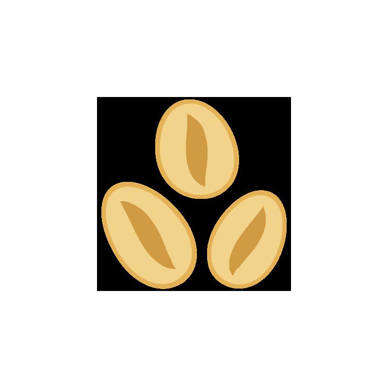 Pszenica w miodzie