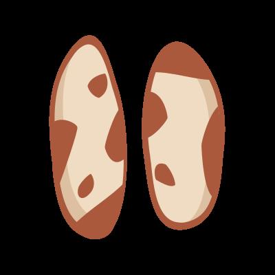 Orzechy brazylijskie