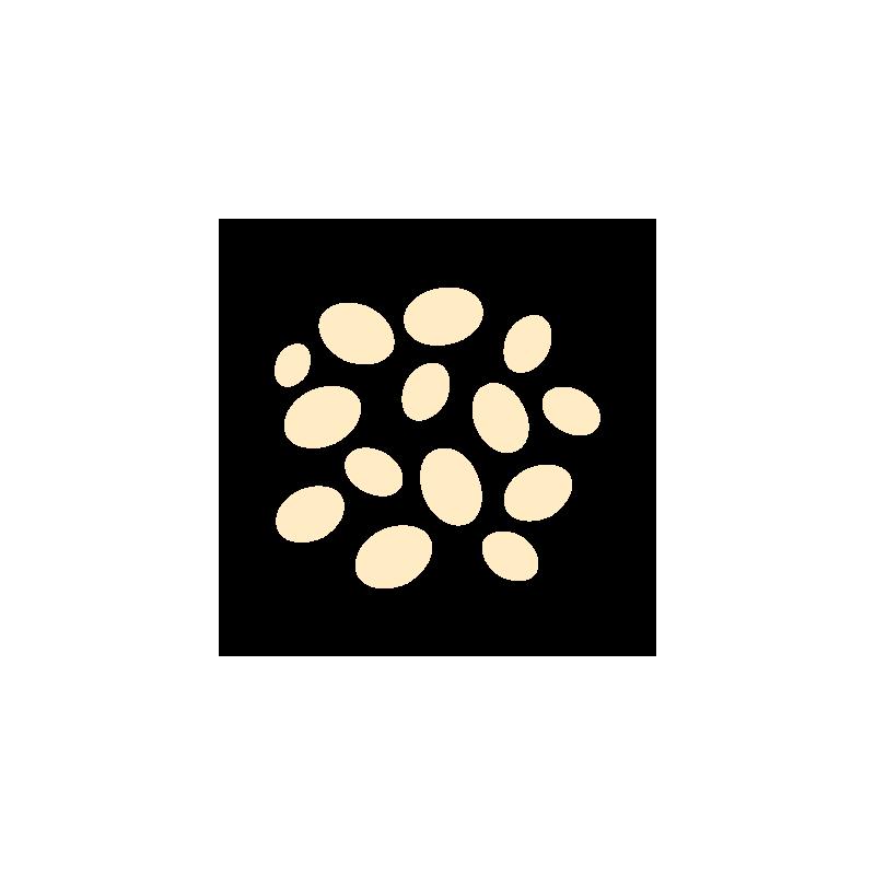Sezam łuskany