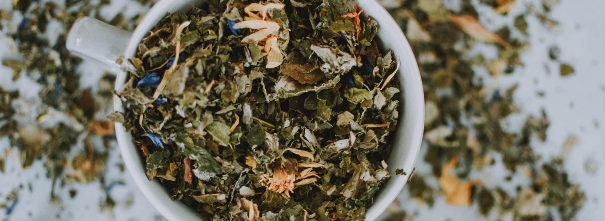 Herbata na przeziębienie – sprawdź która jest najlepsza